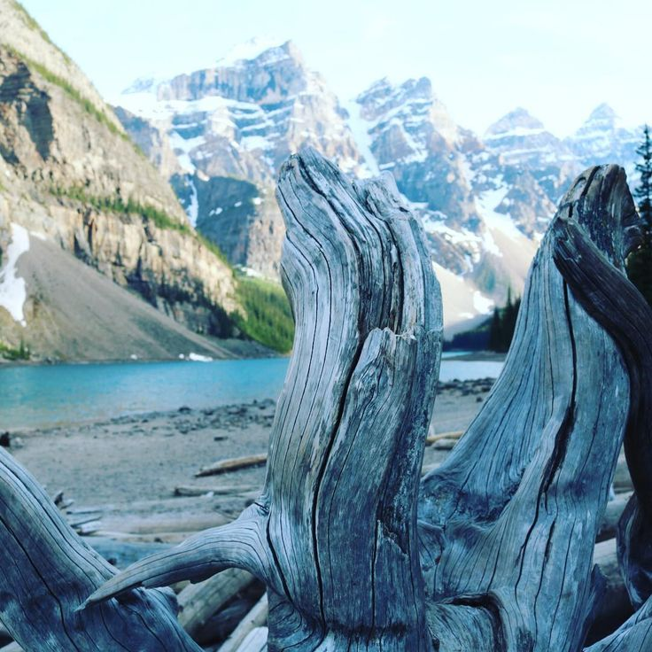 I'm all about appreciating the beauty in your own backyard. I just happen to be lucky enough to call the Rocky Mountains my backyard (at le...