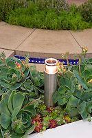 Суккуленты окружающие садовое освещение рядом с патио