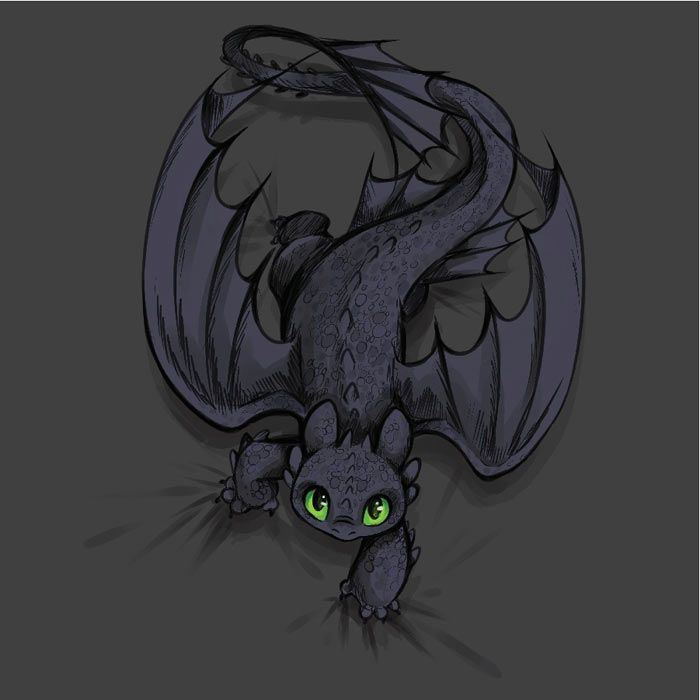 toothless how to train your dragon – Google Search