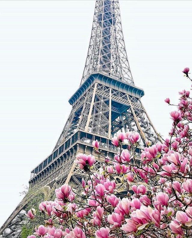 Картинка эйфелевая башня для контакта