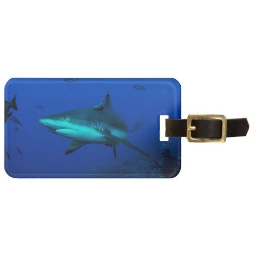 Awesome luggage tag featuring a blacktip reef shark. The photo was taken during a shark feed at Osprey Reef about 200km off the coast of Australia. #shark #coral #sharks #reef #scuba #animals #marine #australia #luggage #greatbarrierreef