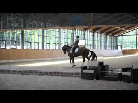 Fiona Bigwood's indoor school - video and interview about her very nice indoor riding arena  Built by http://www.laake.com