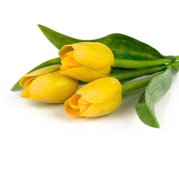 Косметика tianDe — «SviDen.RU_Festive bouquet of tulips 04.jpg» на... ❤ liked on Polyvore