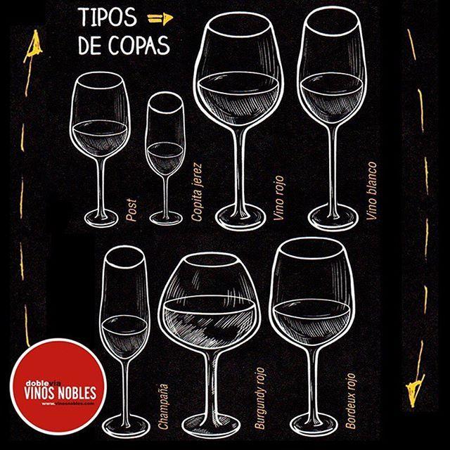 Hay una copa para cada tipo de vino, aquí te ayudamos con una pequeña guía para que atiendas a tus invitados como un experto.  #Vino #Wine #Winelover #ClubdeVinos #Sommelier #Viñedos #RutaDelVino #WineTour #WineTasting #Winery #Winemaker #Harvest #Cellar #Travel #Food #Culture #Barrels #Grapes #Catas #Sibarita
