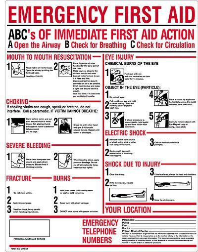 Basic first aid training pdf espa?ol