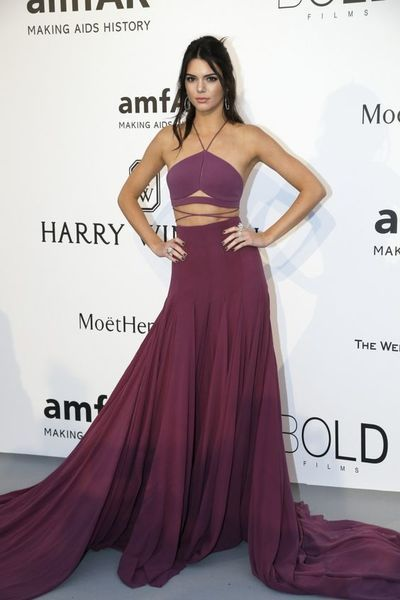 Inspired By Kendall Jenner Celebrity Dresses Purple A Line Chiffon