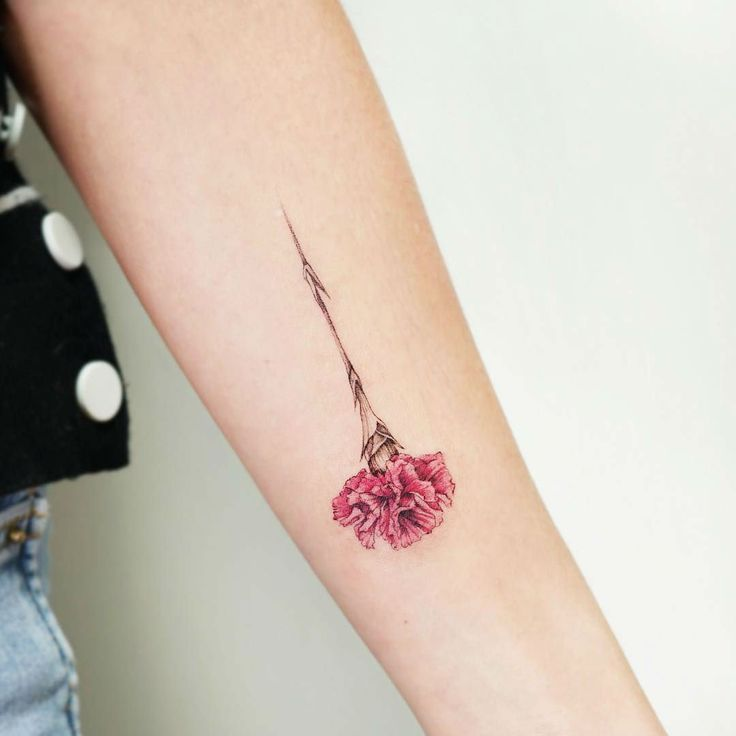 27 Beautiful Carnation Tattoo Ideas And Their Symbolism Carnation Tattoo Carnation Flower Tattoo Tattoo Designs And Meanings
