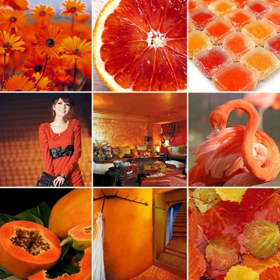 33 Orange Color Schemes, Inspiring Ideas for Modern Interior Decorating with Orange Colors – Lushome