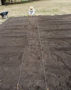 The best easy to follow guide and pictures for starting a Garden...this has been very helpful for me!!: Gardens Ideas, Start A Gardens, Guide To Gardening Vegetables, Vegetables Gardens, Following Guide, Veggie Garden Layout, Step By Step, Gardens Thy, Starting A Garden
