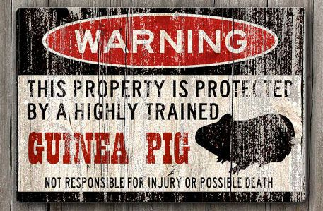 Guinea Pig Property Protection Warning Sign