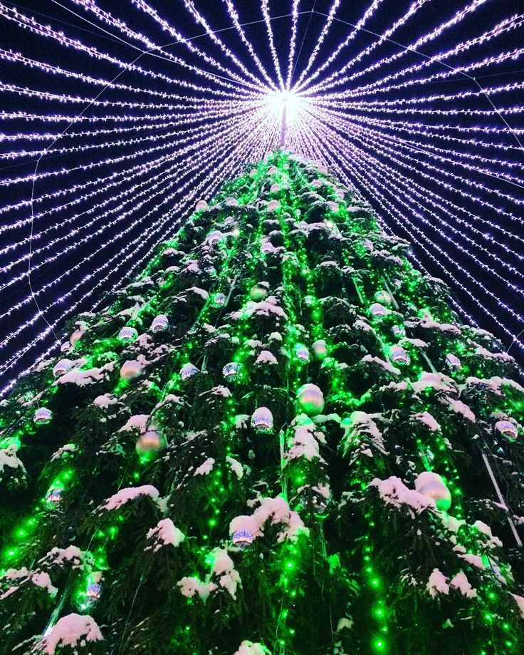 Argos Christmas Light Decorations: 17 Best Ideas About Christmas Tree Artificial On Pinterest