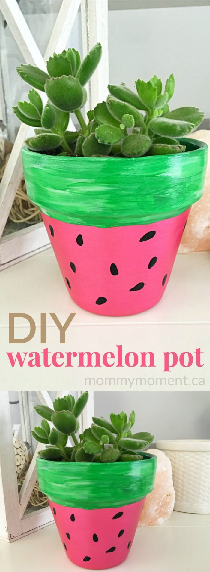 DIY hand painted watermelon terra cotta pot for succulents. They make a sweet summer gift.