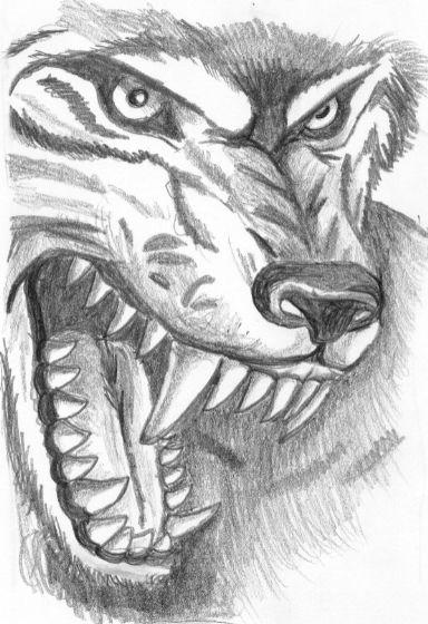 волки рисунки карандашом - Поиск в Google
