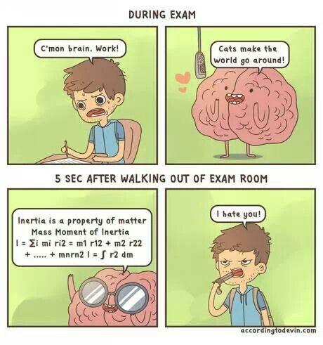 Damn you, you jerk-brain!!