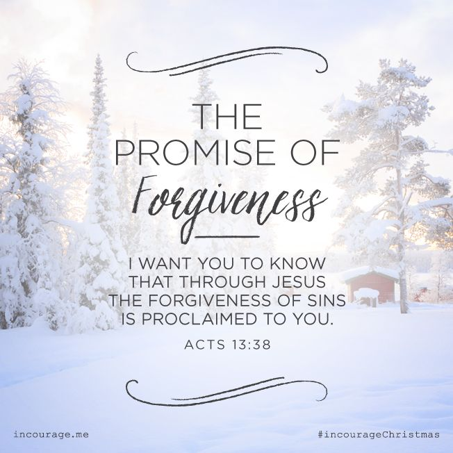 "Day 16- The Promise of Forgiveness // ""I want you to know that through Jesus the forgiveness of sins is proclaimed to you."" {Acts 13:38} // 25 Days of Christmas Promises #incourageChristmas"