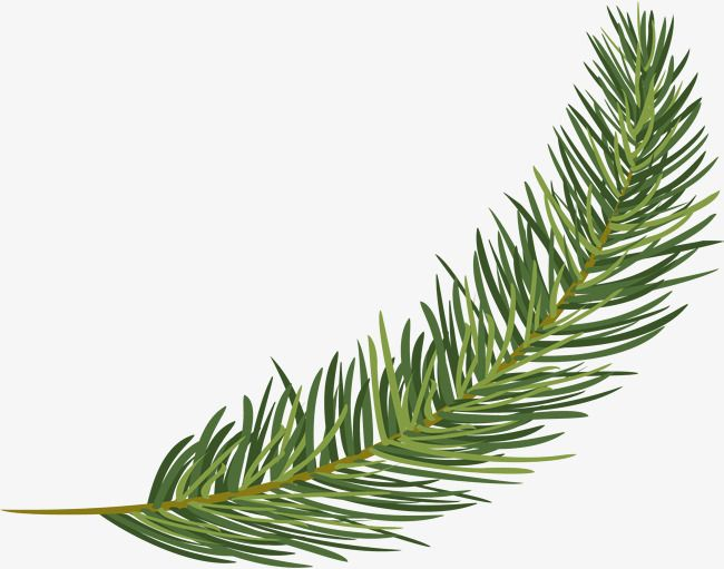Small Fresh Green Pine Pine Leaf Green Flower Painting