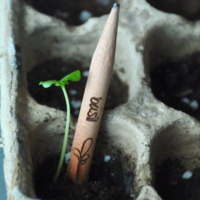 Sprout pencil: una matita eco friendly http://idesignme.eu/2013/10/sprout-pencil-una-matita-eco-friendly/ #pencil #eco #ecology #plants #green #seed #design #greenproduct #trends