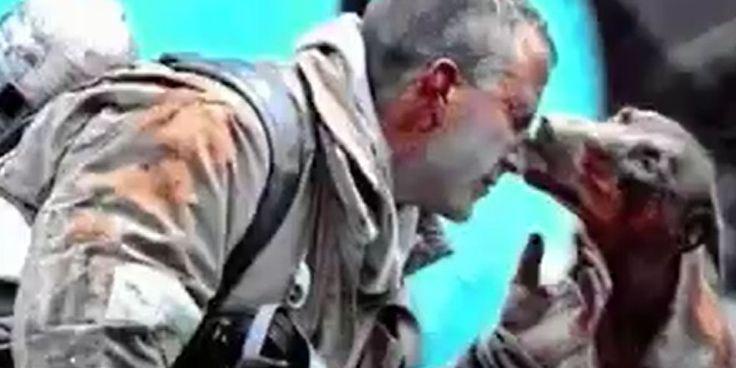 [VIDÉO] Ces sauvetages d'animaux vont vous redonner foi en l'humanité - http://www.le-lorrain.fr/blog/2016/11/02/video-sauvetages-danimaux-redonner-foi-lhumanite/