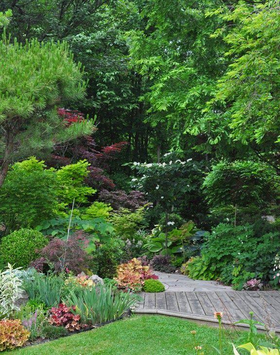 715 best Garden Shade images on Pinterest Garden shade Garden