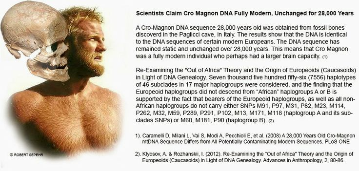 Cro Magnon DNA Unchanged for 28,000 Years Claim Scientists