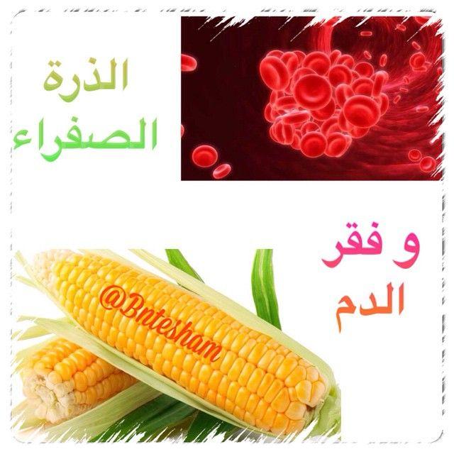 فوائد الذرة في الوقاية من فقر الدم باعتبار الذرة الصفراء مصدر للحديد والفوليت بالتاكيد سيكون لها دور عظيم جدا Vegetables Instagram Posts Fruits Vegetables