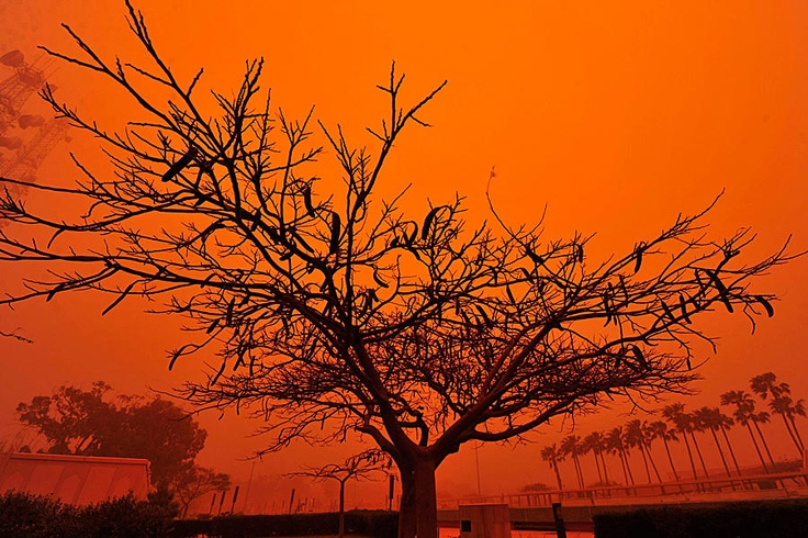 A strong dust storm that prevented people from leaving their homes in Benghazi, Libya.