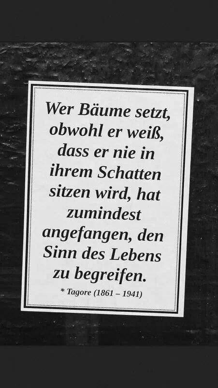 """"""""""" Sinn des Lebens """"""""..."""