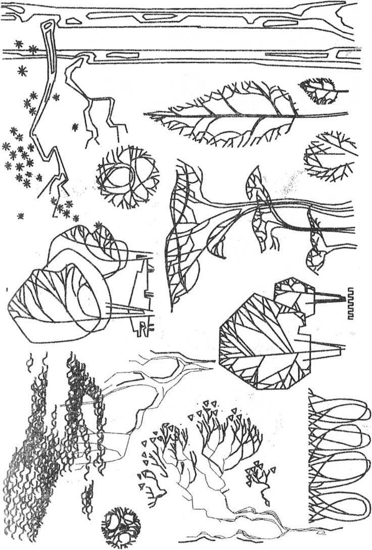 Стилизованное изображение деревьев, деталей рельефа и городского окружения.