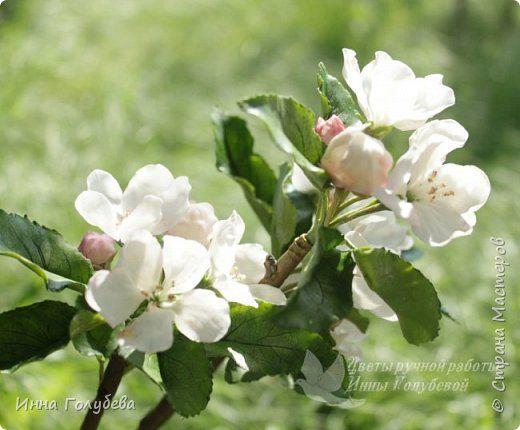 Мини- мк по листикам и сборке ветки яблони