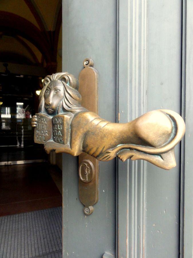 A lion brass door knob in Debrecen.