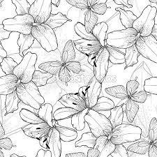 Resultado de imagen para imagen  con  contornos a blanco y negro