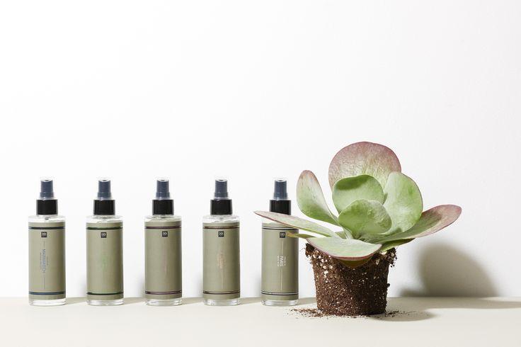 Bold Mixes | New Collection | Home | Spray | Photography