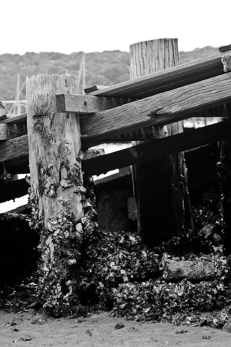 Pier #pier #oldpier #blackandwhite #BW
