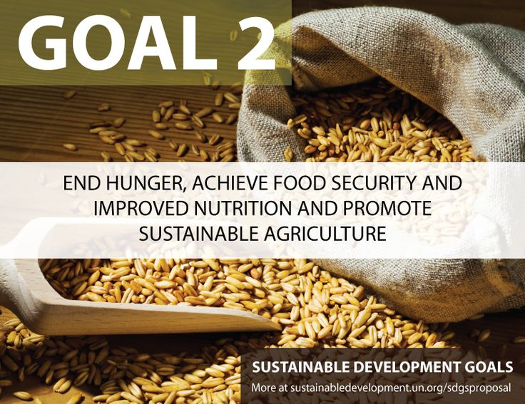 Sustainable Development Goal Two by 2030 - End hunger, achieve food security and improved nutrition and promote sustainable agriculture