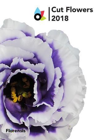 Florensis Cut Flowers 2018