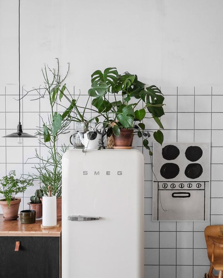 Plants in the kitchen white smeg fridge