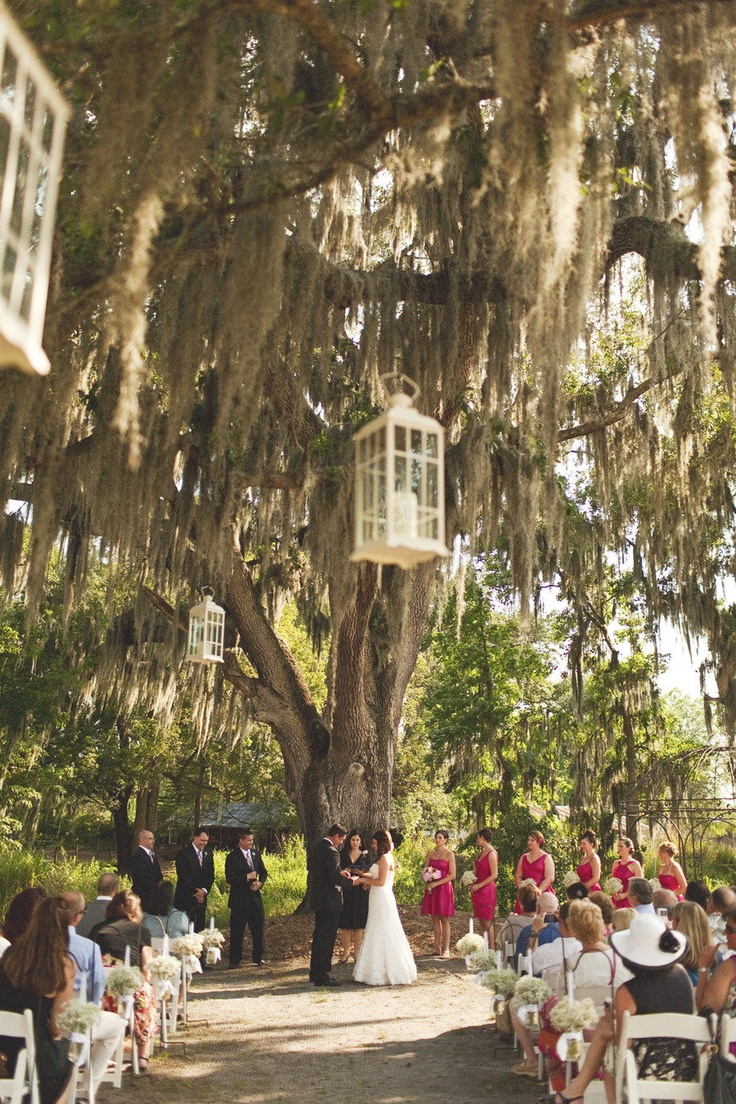 Great space for a wedding ceremony photo tina bass for Where to have an outdoor wedding