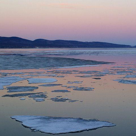 La fonte des glaces - The ice melting