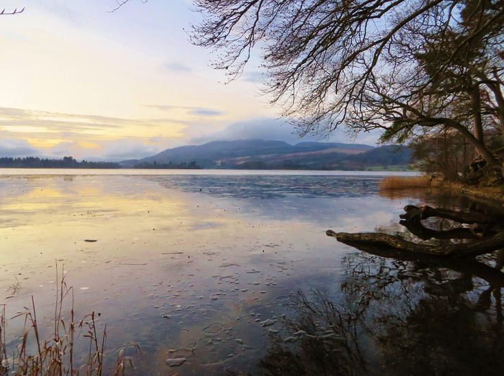 Lake of Menteith, Hairy Coo Tour, Ice lake, Scotland, Menteith, sunset, Travel, Bucket List