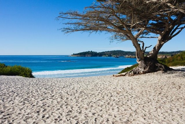 Carmel Beach and Cyprus, Carmel-by-the-Sea, California