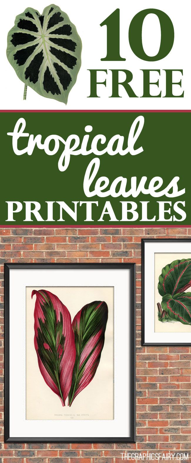 Home Decor Photos Free free interior design ideas for home decor 10 Free Tropical Leaves Printables