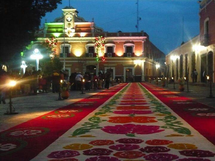 Alfombra en tlaxcala capital al fondo palacio de gobierno Alfombras persas en mexico