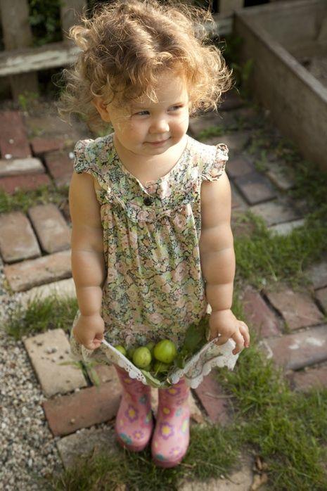 Apanhar legumes em família