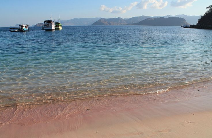The Pink Beach in Komodo National Park, Flores, Indonesia