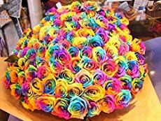Read directions about how to make rainbow roses.