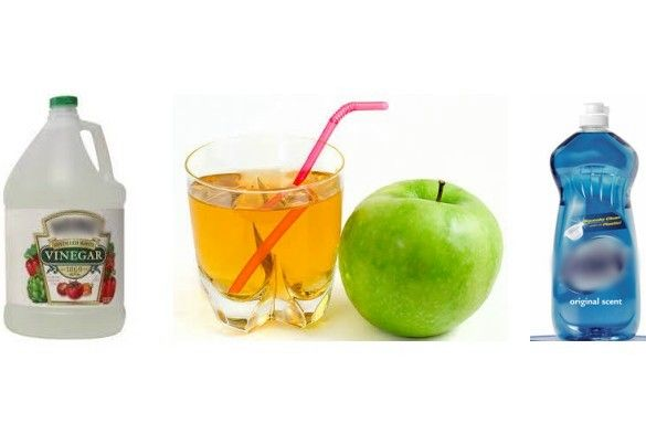fruit flies vinegar healthy fruit juices for kids