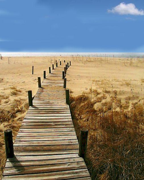 Marthas+Vineyard+Beaches | ... of the vineyard best-beaches-marthas-vineyard – Vineyard Stories