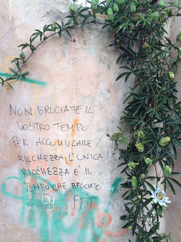 Muri e parole