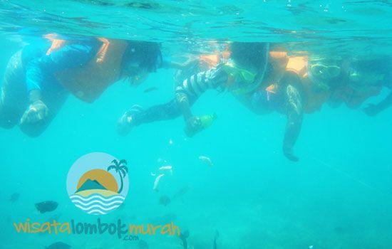 Keseruan snorkling di wisata gili nanggu Lombok  #gili #lombok #gililombok #nanggu #gilinanggu #gilinanggulombok #wisata #wisatagili #wisatalombok