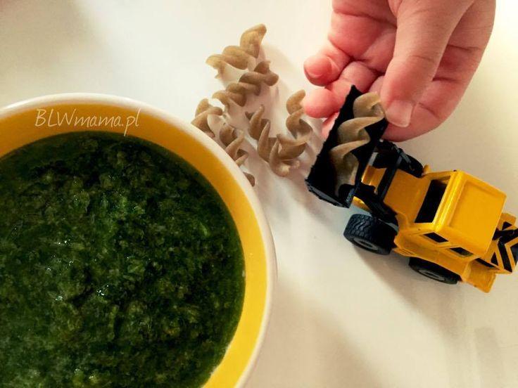 Pietruszkowe pesto pełne mocy! BLW – BLW od kuchni. Rozwój dziecka przez jedzenie.